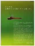 imagekokoro.jpg